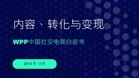 WPP集团:《内容、转化与变现》中国社交电商白皮书(附下载48P)