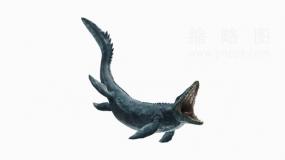 超清晰恐龙25 PNG文件