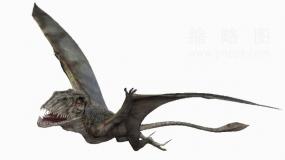 侏罗纪时代恐龙36 PNG免抠图