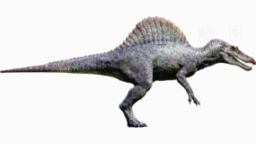 侏罗纪时代恐龙4 PNG免抠图