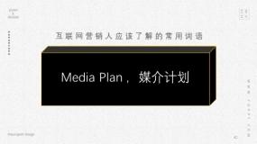 Media Plan ,媒介计划
